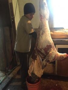 Devin butchering